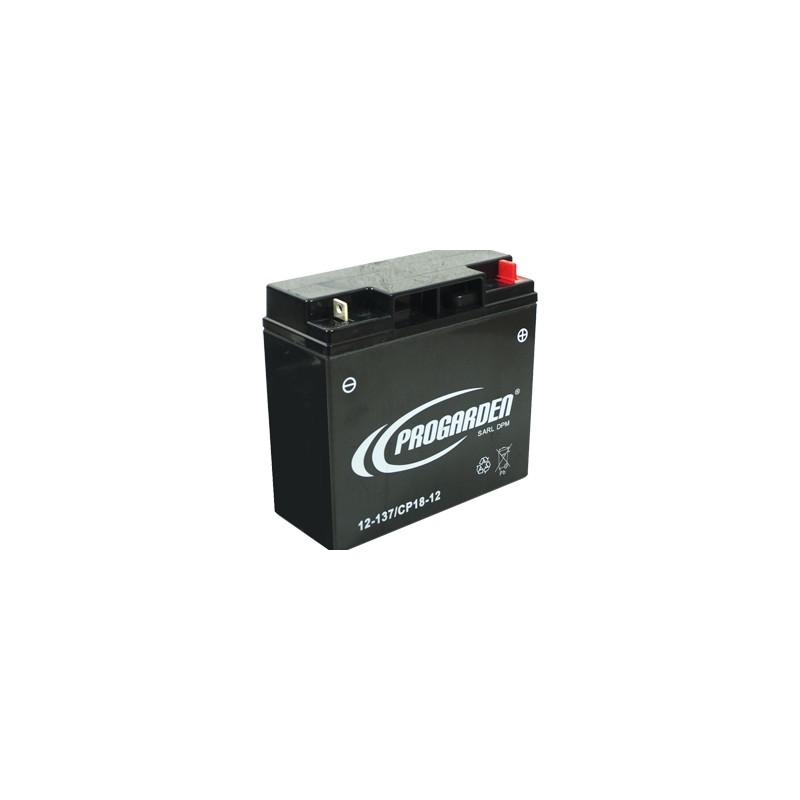 batterie pour castelgarden au gel cp20 12 pour tondeuse et autoportee. Black Bedroom Furniture Sets. Home Design Ideas