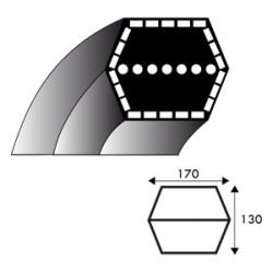 Courroie hexagonale AA88 - 12.7 mm x 2288 mm - MTD 754-0443 - 754-0443A - 954-0443