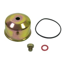 Cuve de carburateur Briggs et Stratton 495933